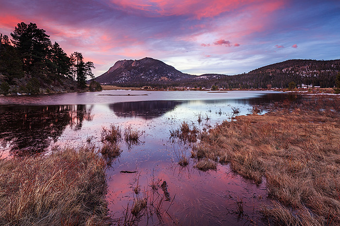 Sheep Lakes,Horseshoe Park,Deer Mountain,RMNP,Rocky Mountain National Park,Colorado,Sunrise,spring,bighorn sheep, photo