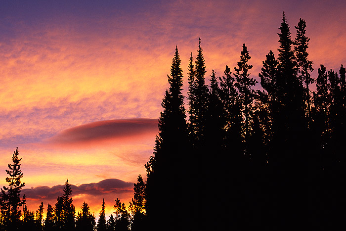 The pines along Bierstadt Lake appear to be sentinels watching the sunrise unfold before them. Lenticular clouds help to add...