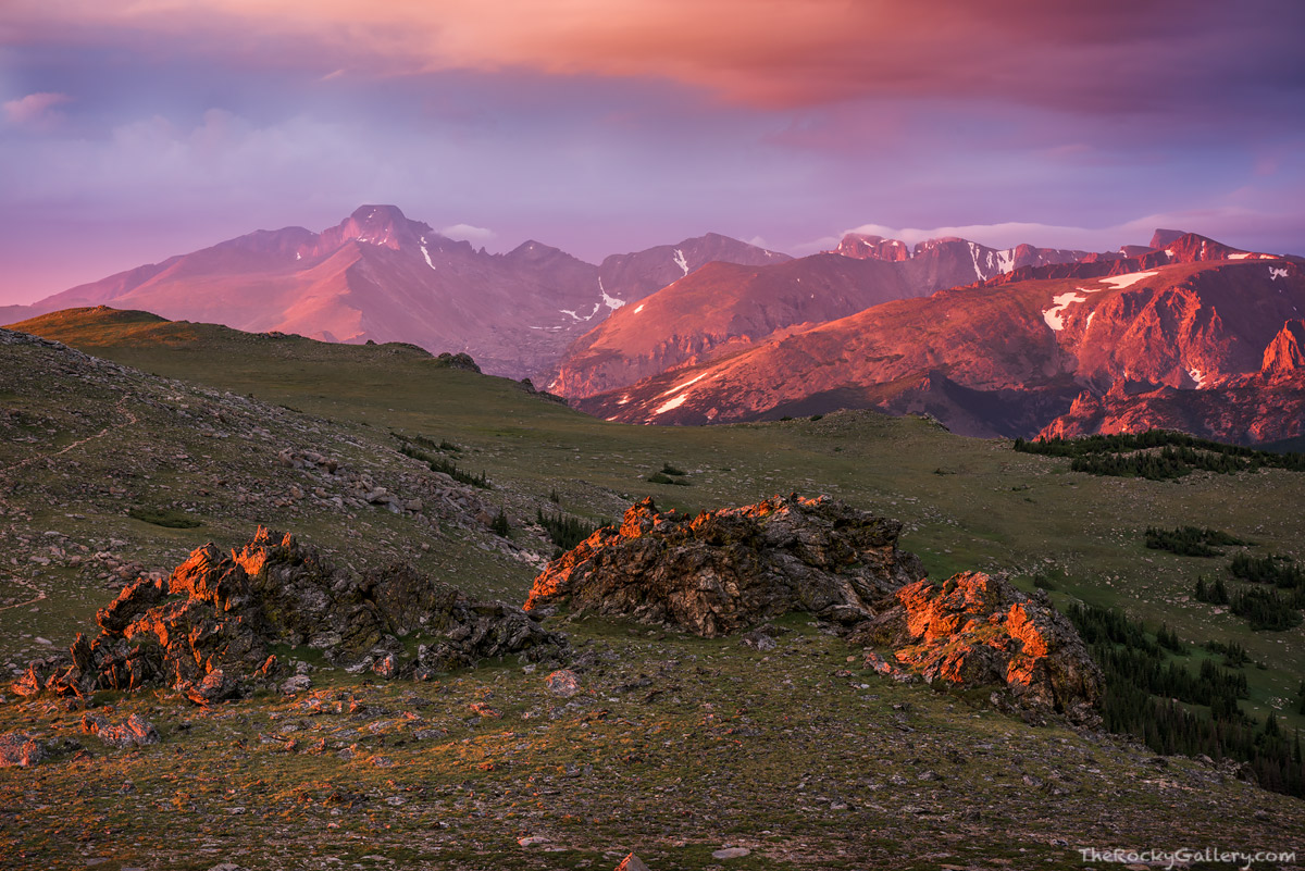 Ute Trail,Longs Peak,Forest Canyon,Alpine,Tundra,Trail Ridge Road,Sunrise,Landscapes,Photography,Estes Park,RMNP,Colorado,Rocky Mountain National Park,July, photo