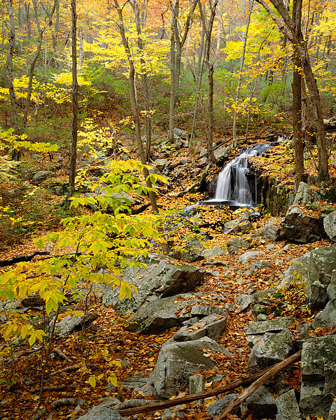 Harriman State Park, Palisade Interstate Park, Fall Color, New York, West Point, Hudson Valley, photo