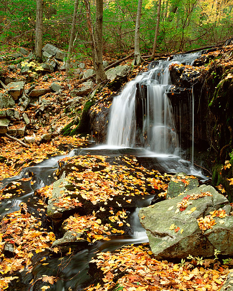 Harriman State Park, New York, Tioratti Falls, Autumn, Fall Color, photo