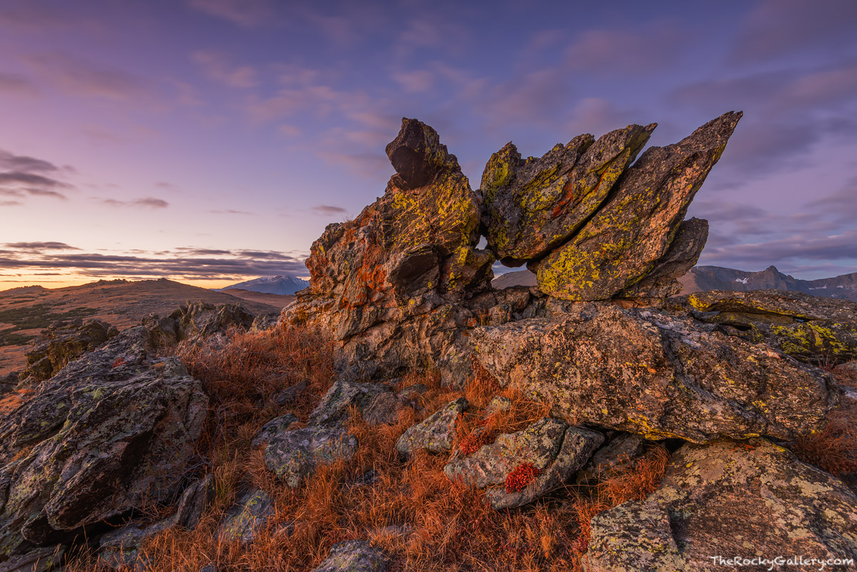 Trail Ridge Road,Ute Pass,Longs Peak,Hayden Spire,RMNP,Grand Lake,Estes Park,Rocky Mountain National Park,Colorado,Landscape,Photography,October,Sunrise,Glacial Erratic,Timberline,alpine tundra
