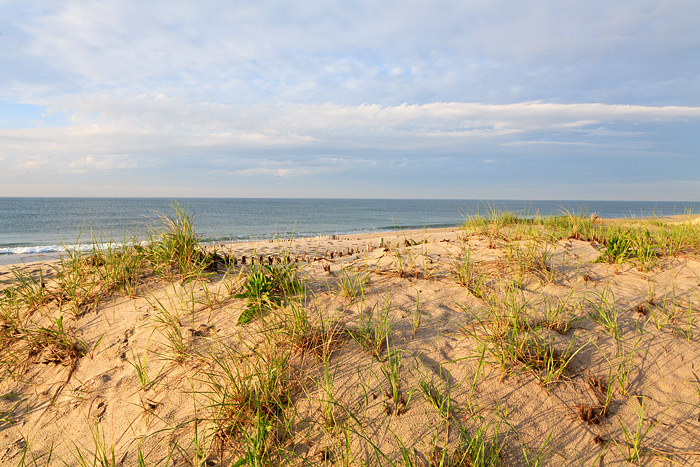 Watermill, Beach, Hamptons, Southampton, New York, Dunes, photo