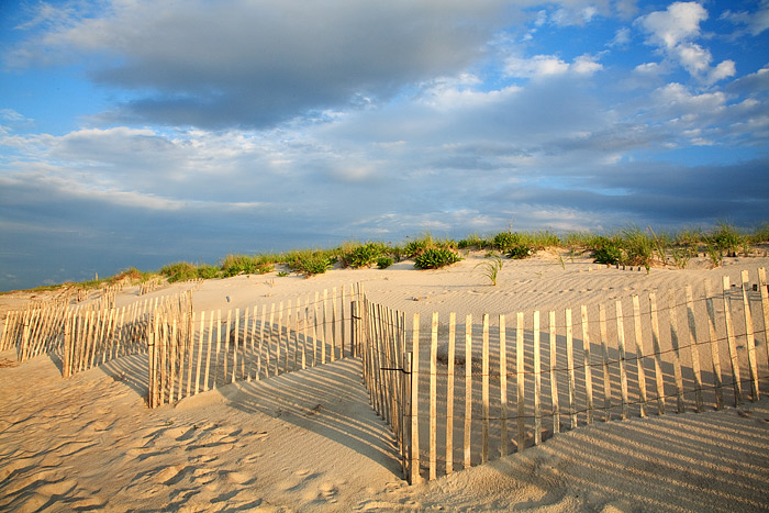 A Dune Fence along Watermill Beach, Southampton. These dune fences are found along many of the beaches of the Hamptons to protect...