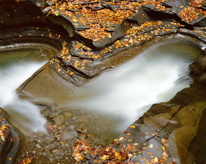 Watkins Glenn cascades through the rocks which are covered with Autumn leaves. Watkins Glenn is located in the Finger Lake Region...