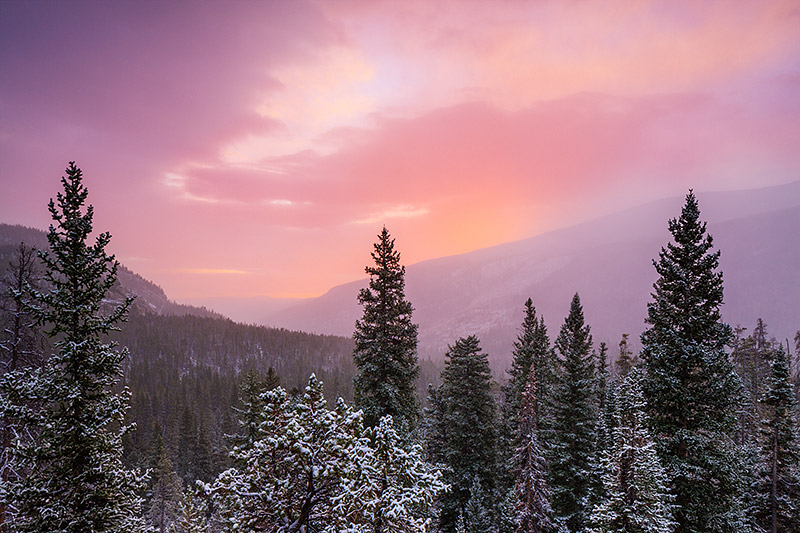 It was a cold and snow morning in Wild Basin. Snow was falling and blowing over drainage that is home to the Saint Vrain river...